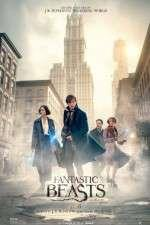 Watch Fantastic Beasts and Where to Find Them Online M4ufree