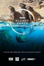 Watch Planet Earth: A Celebration M4ufree